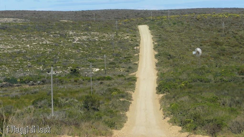 Colline di fynbos all'interno della Riserva