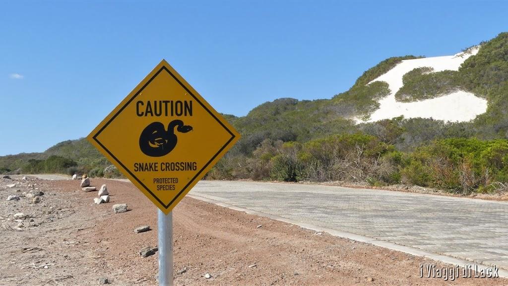 cartello pericolo serpenti