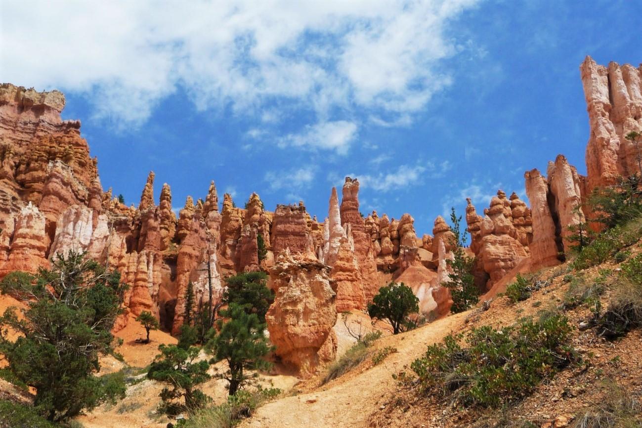 Navajo Loop Trail
